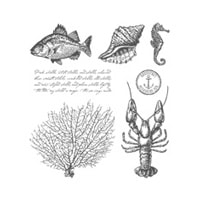 By The Tide Clear Stamp Set