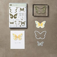 Watercolor Wings Photopolymer Bundle