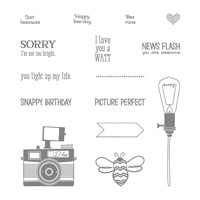 Pun Intended Photopolymer Stamp Set