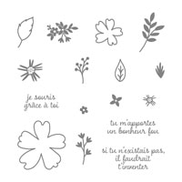 Amour Et Affection Photopolymer Stamp Set (French)