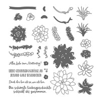 Sukkulente Akzente Photopolymer Stamp Set
