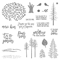 Entre Les Branches French Photopolymer Stamp Set