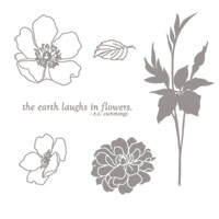 Fabulous Florets - Clear-Mount Stamp