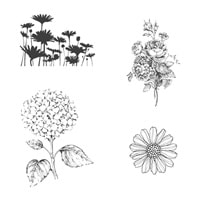 Best Of Flowers Clear-mount Stamp Set