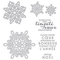 Tempête De Souhaits Photopolymer Stamp Set (French)