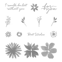 Blooms & Wishes Photopolymer Stamps