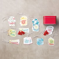 Tin Of Tags Project Kit