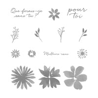 Fleurs Et Souhaits Photopolymer Stamp Set (French)