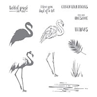 Fabulous Flamingo Photopolymer Stamp Set