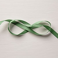 "Garden Green 3/8"" Stitched Satin Ribbon"