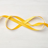 "Crushed Curry 3/8"" Stitched Satin Ribbon"