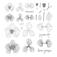Orchidée Grimpante Photopolymer Stamp Set (French)