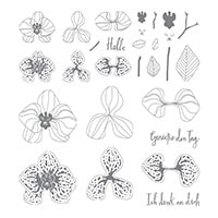 Orchideenzweig Photopolymer Stamp Set (German)