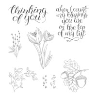 Count My Blessings Clear-Mount Stamp Set