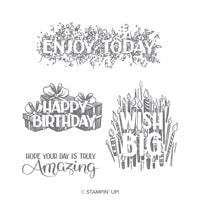 Big Wishes Clear-Mount Stamp Set