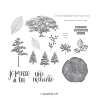 Racines De Vie Clear-Mount Stamp Set (French)