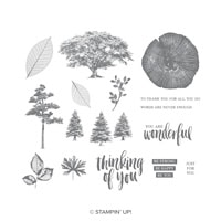 Rooted In Nature Cling-Mount Stamp Set