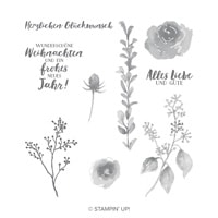 Eisblüten Clear-Mount Stamp Set (German)