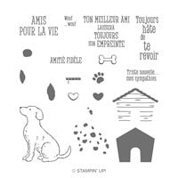 Joyeux Copain Photopolymer Stamp Set (French)