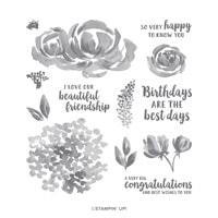 Beautiful Friendship Photopolymer Stamp Set