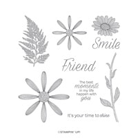 Daisy Lane Cling Stamp Set