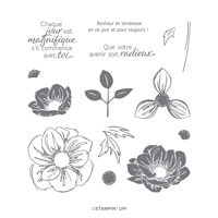 Essence Florale Photopolymer Stamp Set (French)