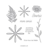 Allée Des Marguerites Cling Stamp Set (French)