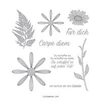 Gänseblümchenglück Cling Stamp Set (German)