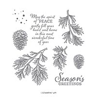 Peaceful Boughs Cling Stamp Set (En)