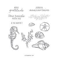 Air Marin Cling Stamp Set (French)