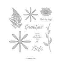Pluk De Dag Cling Stamp Set (Dutch)