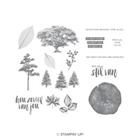 Puur Natuur Cling-Mount Stamp Set (Dutch)