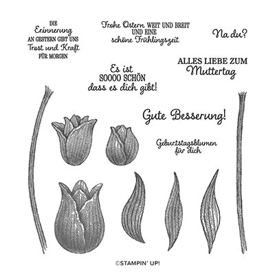 Tulpengrüsse Photopolymer Stamp Set (German)
