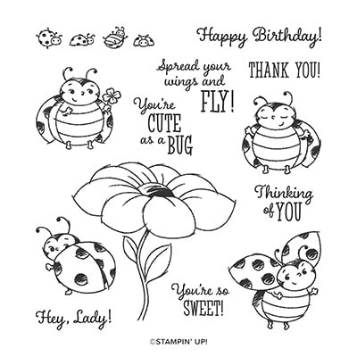 Little Ladybug Host Cling Stamp Set (English)