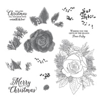 Christmas Rose Stamp Set (English)