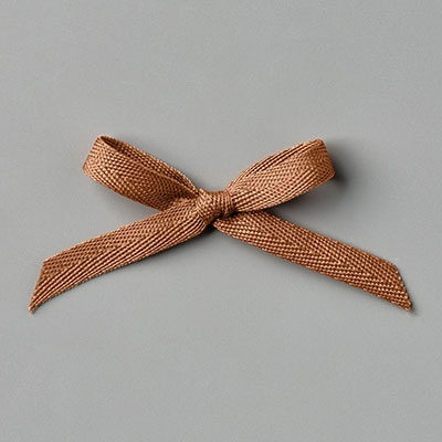 Cinnamon Cider Ribbon