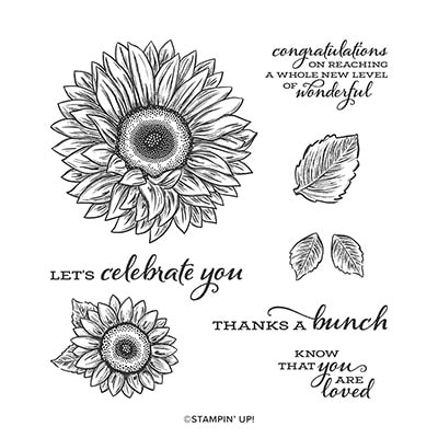 Celebrate Sunflowers Cling Stamp Set (English)