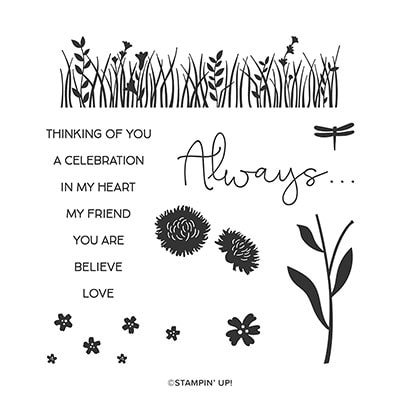 Field Of Flowers Photopolymer Stamp Set