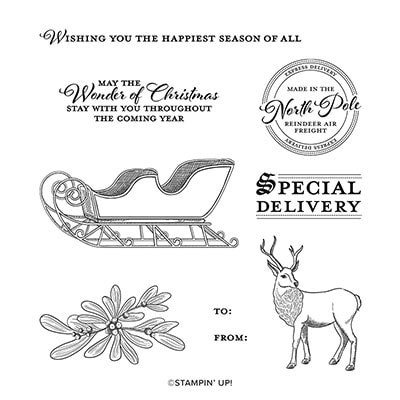 Wishes & Wonder Cling Stamp Set (English)