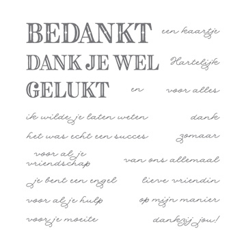 Bedanken In Stijl Photopolymer Stamp Set (Dutch)
