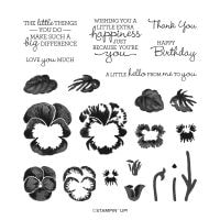 Pansy Patch Photopolymer Stamp Set (English)