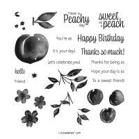 Sweet As A Peach Photopolymer Stamp Set