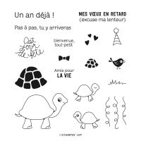 Nos Amies Tortues Photopolymer Stamp Set (French)