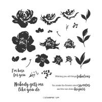 All Things Fabulous Photopolymer Stamp Set (English)