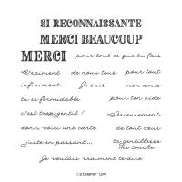Mercis Fignolés Photopolymer Stamp Set (French)
