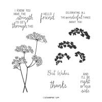 Queen Anne's Lace Photopolymer Stamp Set (English)